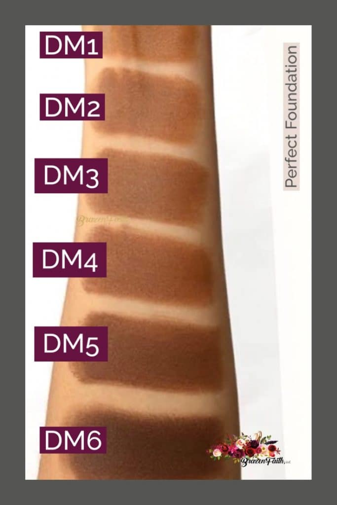 Rich Perfect Foundation on lighter skin tone, LimeLife by Alcone's Dynamic by Danessa Myricks, DM1, DM2, DM3, DM4, DM5, DM6, Makes great contouring shades as well, brazenfaithllc.com, #brazenfaithllc
